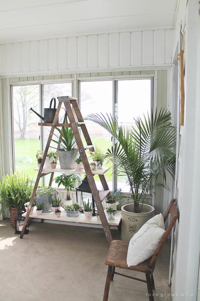 Summer spotlight liz from love grows wild - Reclaimed wood ladder shelf ...