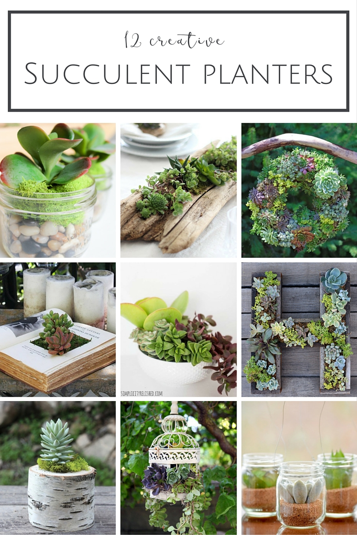 12 Creative Diy Succulent Planter Ideas Making It In The Mountains